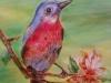 artist-from-shimla-meenal-bansal