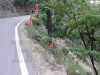 missing-railings-pwd-solan-nh-22