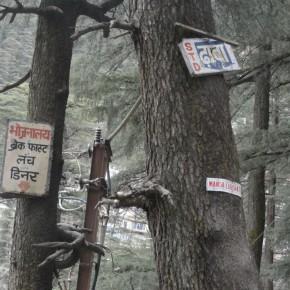 Kamla-Nehru-Hospital-Shimla-3