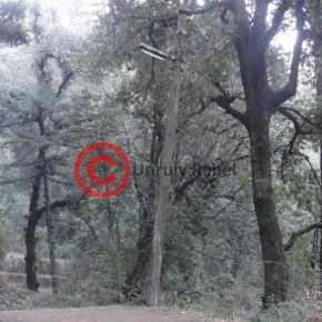 summer-hill-shiv-mandir-road4