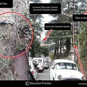Ayurvedic Hospital Shimla