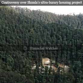 DLF-Shimla-Kanlog