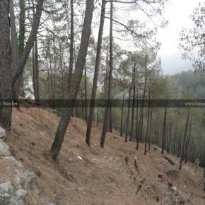 bye-pass-road-shimla