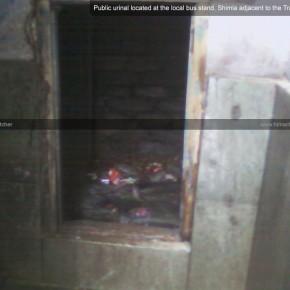 public-toilets-shimla
