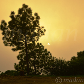 sun-set-view-shimla
