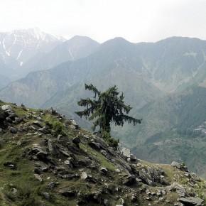 barot-himachal