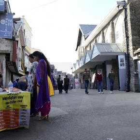 himachal-election-polling-b