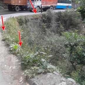 roadside-railings