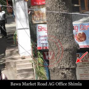 Bawa-Market-shimla