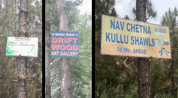 kullu-save-trees