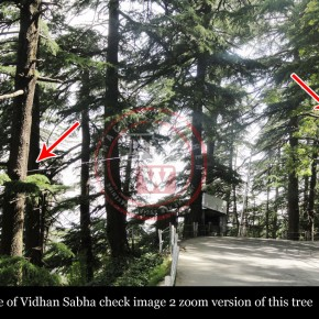 vidhan-sabha-road