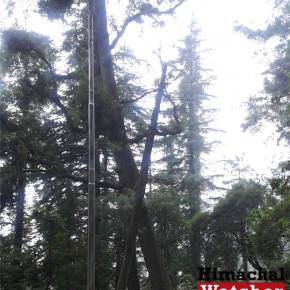 Boileaugang-to-Shiv-mandir-