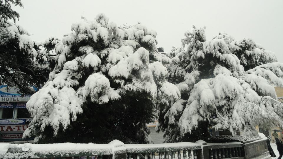 shimla-covered-with-snow