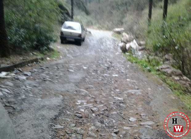 road-from-chhota-shimla-to-flowerdale10