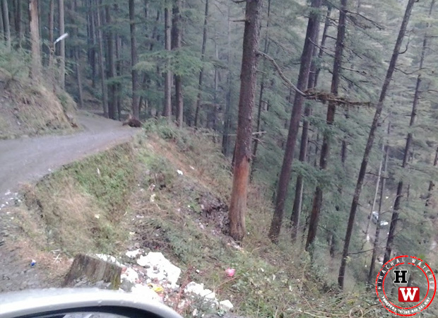 road-from-chhota-shimla-to-flowerdale2