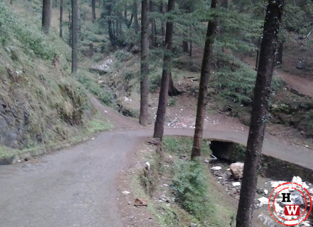 road-from-chhota-shimla-to-flowerdale7