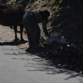 garbage-burned-in-shimla