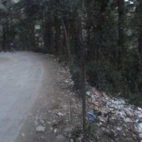 garbage-in-sangti-forest