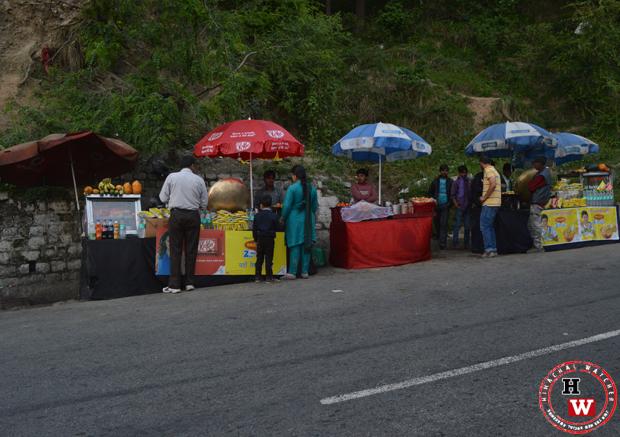 food stalls shimla toursit spots