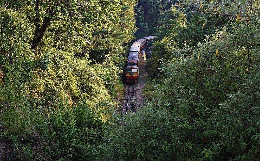 Shimla-Kalka-railway-track-2