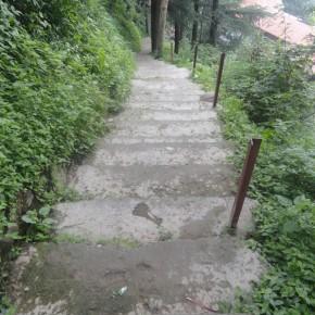 shimla-vikasnagar