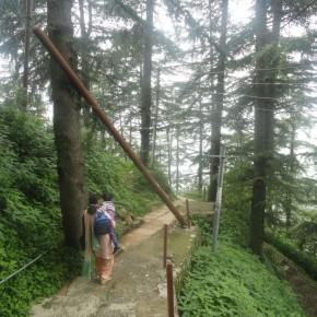 vikasnagar-shimla-hanging-pole