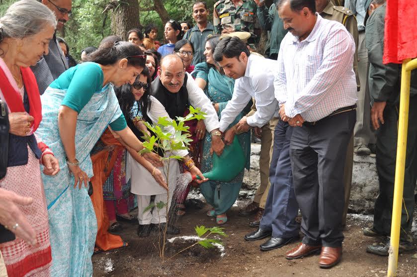 Himachal to plant 45 lakh medicinal plants-Kaul Singh