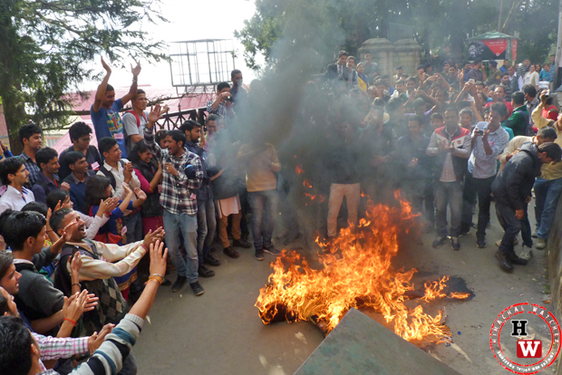 effigy of hpu vc burnt in colleges