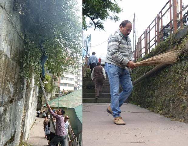 shimla and cleaning campaign