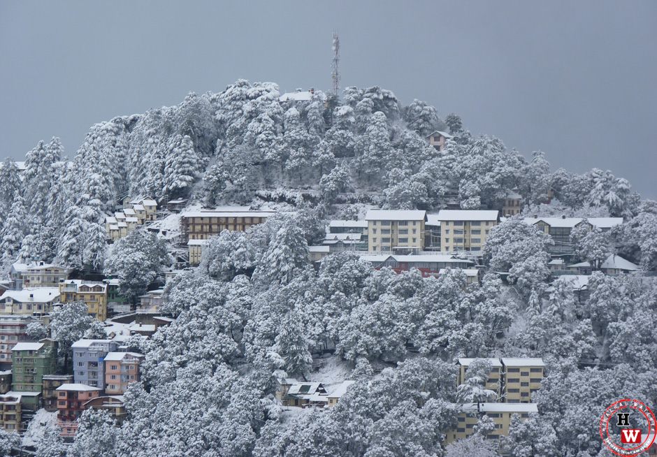 Shimla hotels full