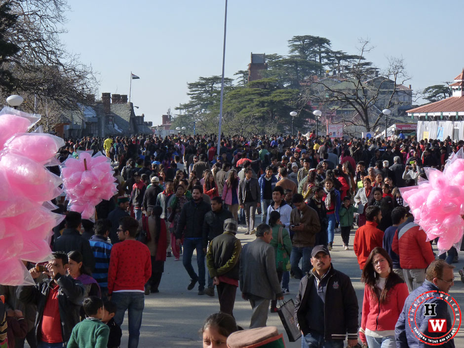 holiday-in-shimla