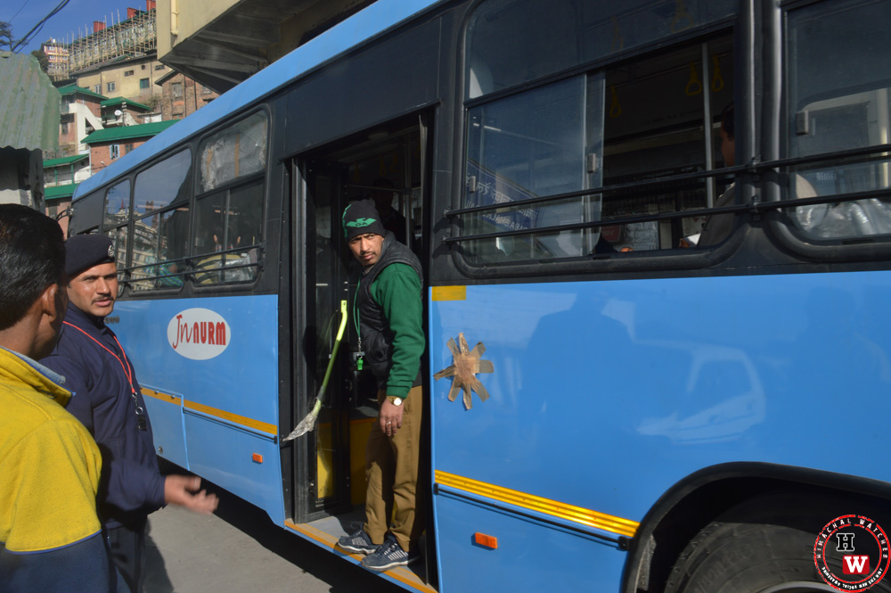 shimla local bus service