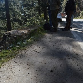 driving-in-himachal