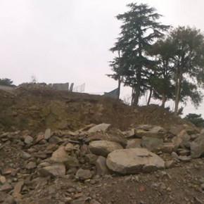 shimla-deforestation