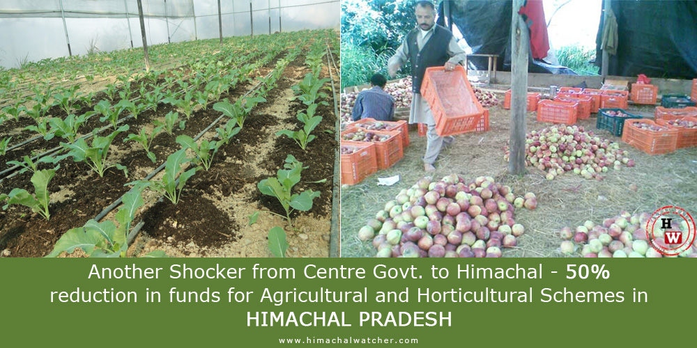 Another Shocker from Centre Govt. to Himachal - 50% reduction in funds for Agricultural and Horticultural Schemes in Himachal Pradesh