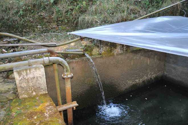 'Septic' water posing threat to human lives in city's outskirts
