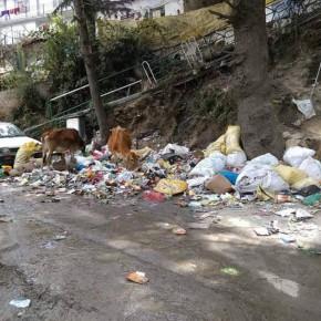 himachal-landfills