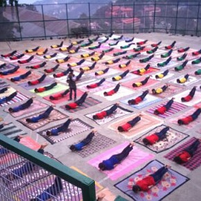 himachal-on-world-yoga-day