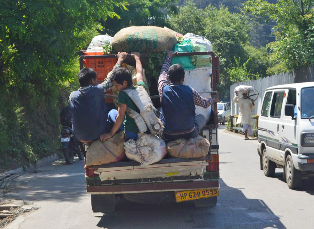 Shimla transportation