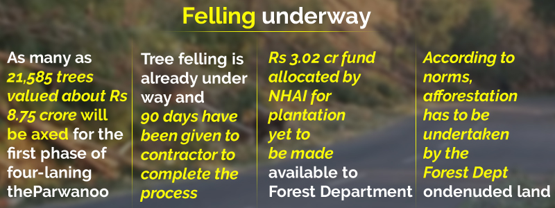 Tree felling for Solan NH to affect climate