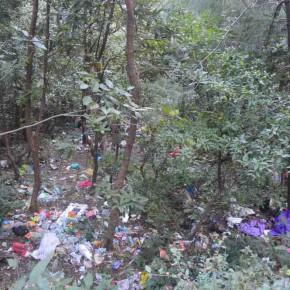 garbage-n-forest-near-shiv-mandir-andri