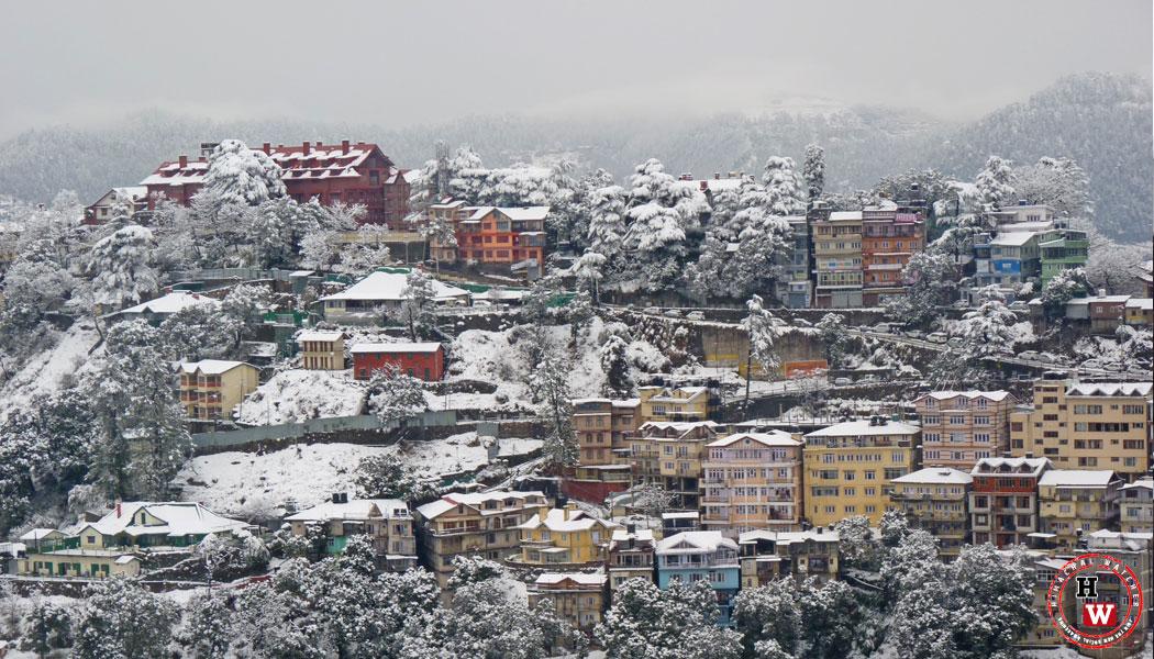 lakkar-bazar-shimla