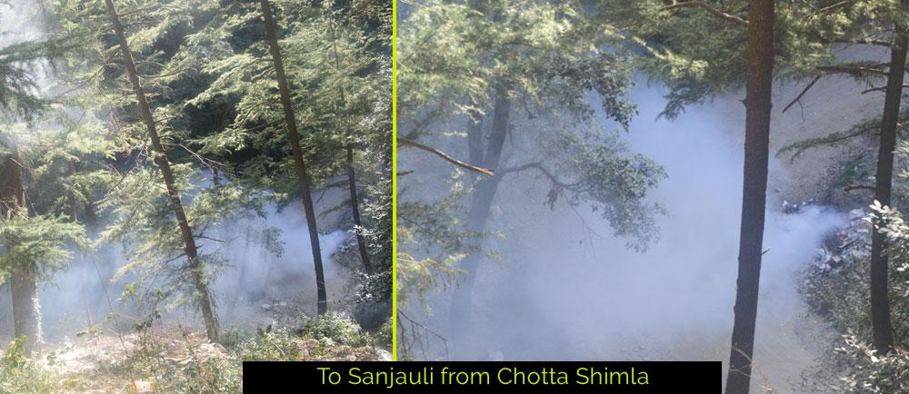 sanjauli-chotta-shimla