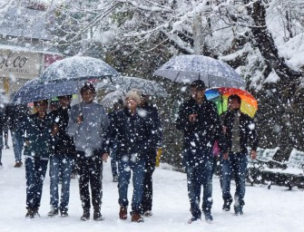 Fresh spell of snow cheers up Shimla after long dry spell – In Pictures