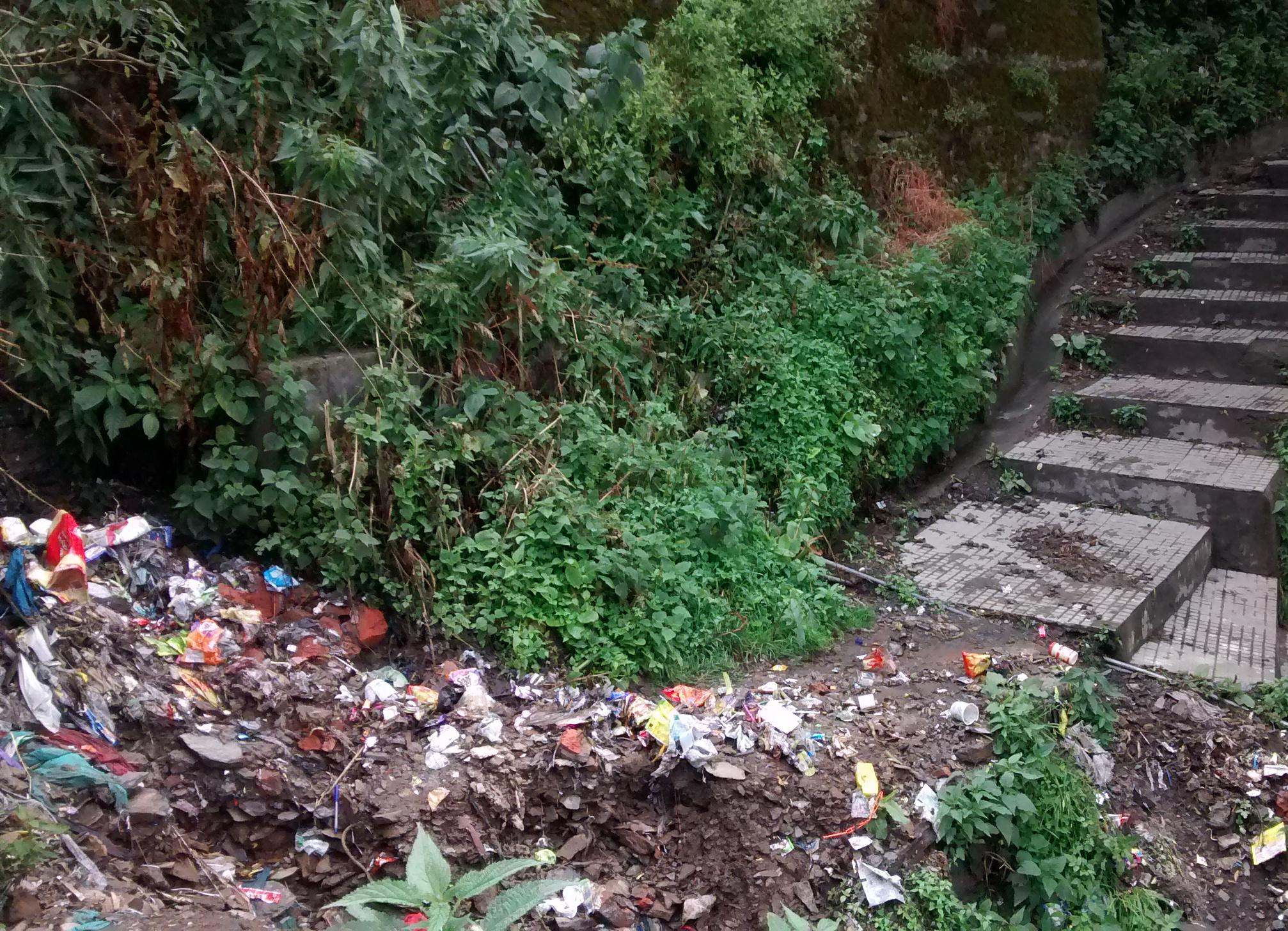 Shimla City Garbage