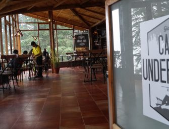 Café Under Tree – Fall in love with Shimla hills over a cup of tea