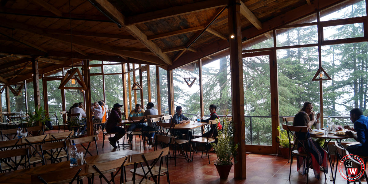 cafe-under-tree-jakhoo-shimla11