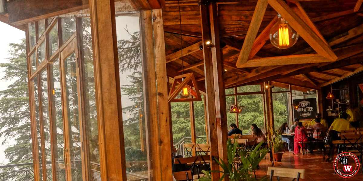 cafe-under-tree-jakhoo-shimla13-shimla