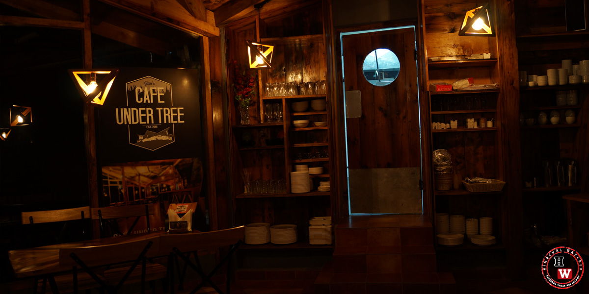 cafe-under-tree-jakhoo-shimla4