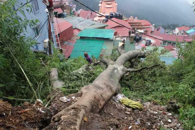 land slide in shimla